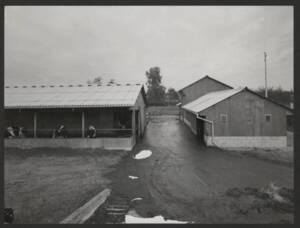 Hangars d'une exploitation agricole : photographie, [années 1980].