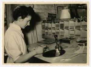 Employée de bureau de la filature Le Blan (Canteleu, Lille, Nord), vers 1955.