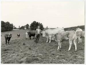 Troupeau de vaches et agriculteur dans un pré : photographie, France (?), sans date.