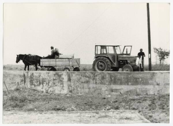Les deux âges de l'agriculture grecque » : photographie (sans date).